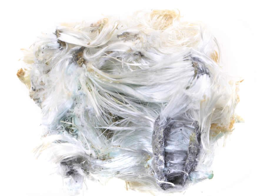 Asbest vorm